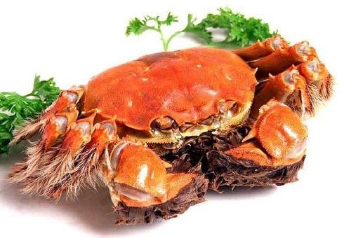 青灰色的螃蟹,为何煮熟之后变成橘红色?